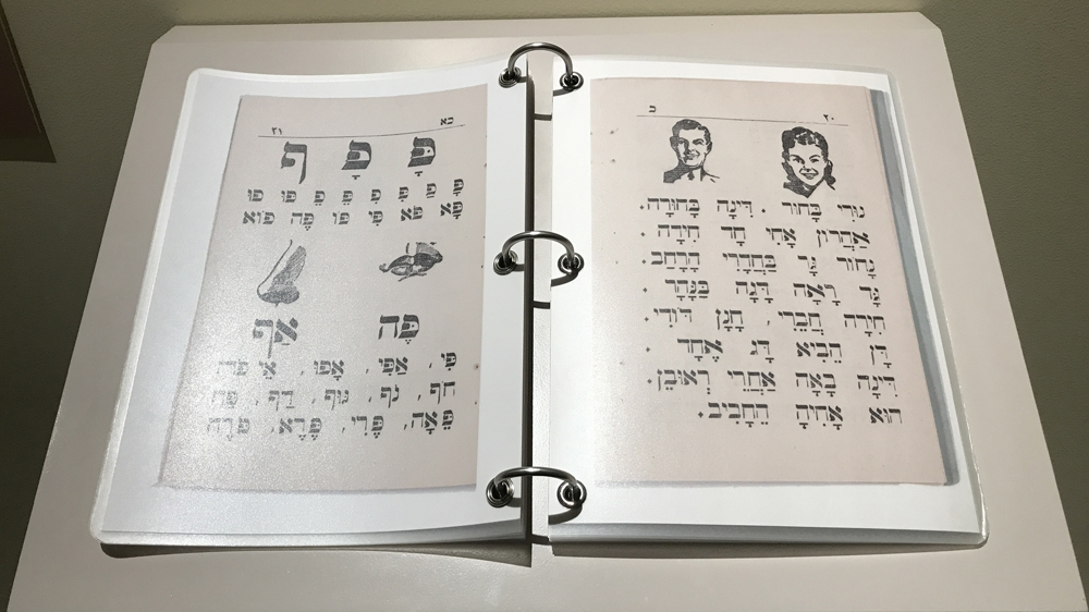 The collection has books in several languages, including Hebrew and Arabic [Dalia Hatuqa/Al Jazeera]