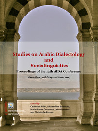 A Lexicological Study of Arabic and Judaeo-Arabic in Iraqi Hebrew Novels